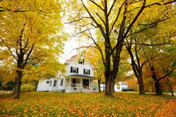 House_Home_Lyme_Treatment